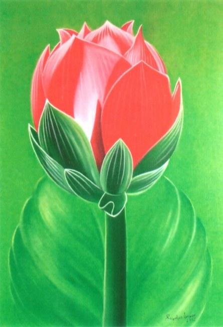 Bud Lotus