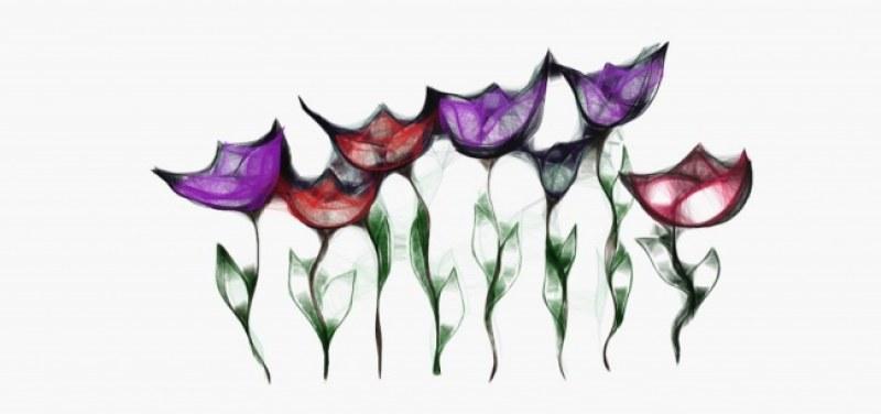 Spiderweb Flowers