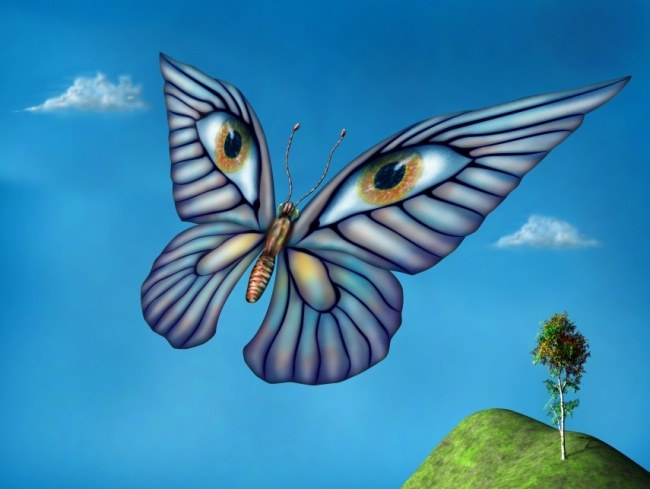Surreal butterfly