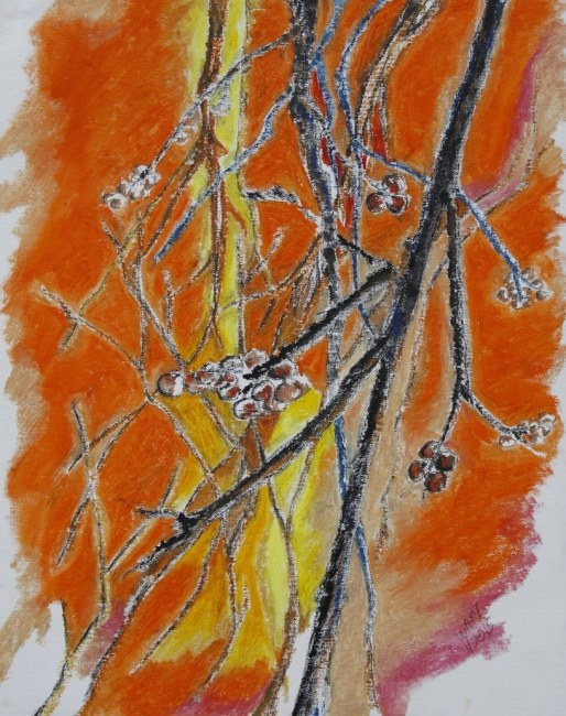 The old persimmon tree