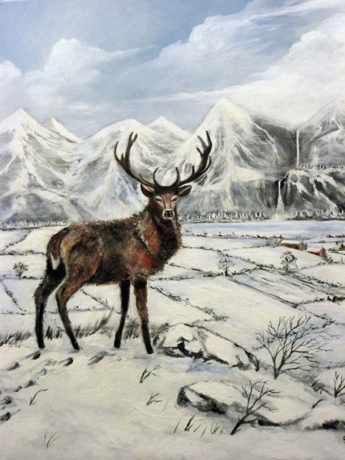 Twelve Point Highland Stag (Winter coat)