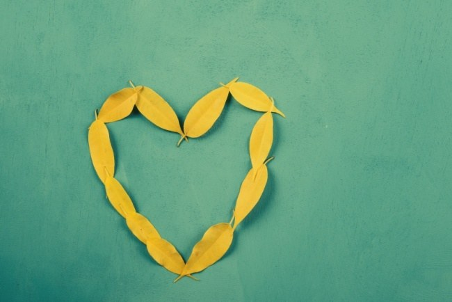 Heart Shape Yellow Autumn Leaves On Turquoise Wood Table
