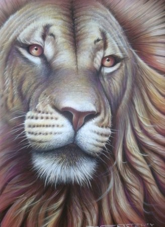 Lion portrait - Alpha male