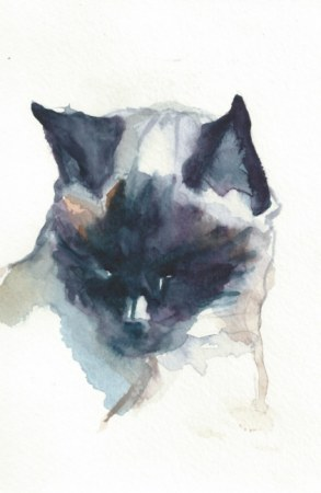Cat painting - Sam