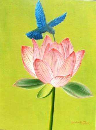 Hummingbird Lotus