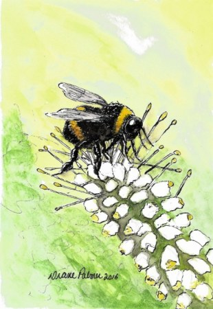 Bumble Bee - Ink and Watercolor Painting