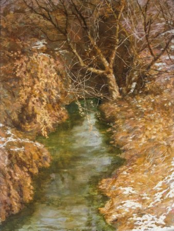 Streams in the woods in winter