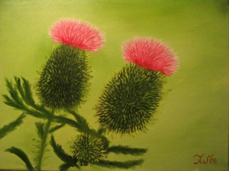Thistles - beautiful but watch out for the thorns