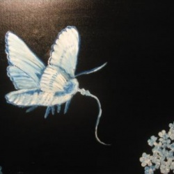 As a Moth is drawn Towards Flowers and Light . . .
