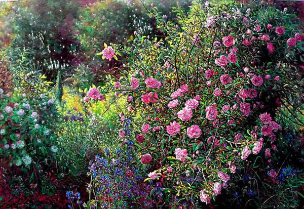 Rose Garden 1 Liboart Foundmyself