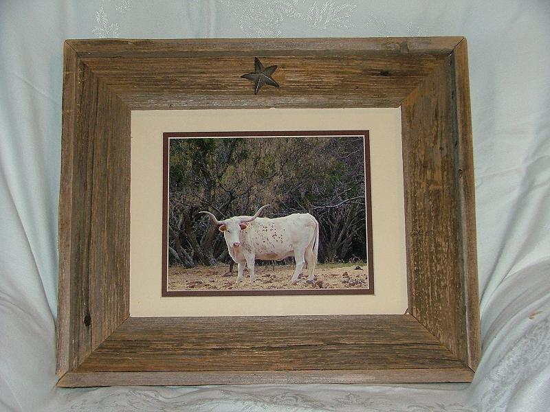 White Texas Longhorn In Rustic Barnwood Custom Frame