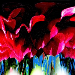Big Red Rose Abstract