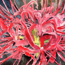 Red flower painting art print