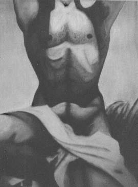 Study of Male Torso.