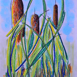Cattails #5