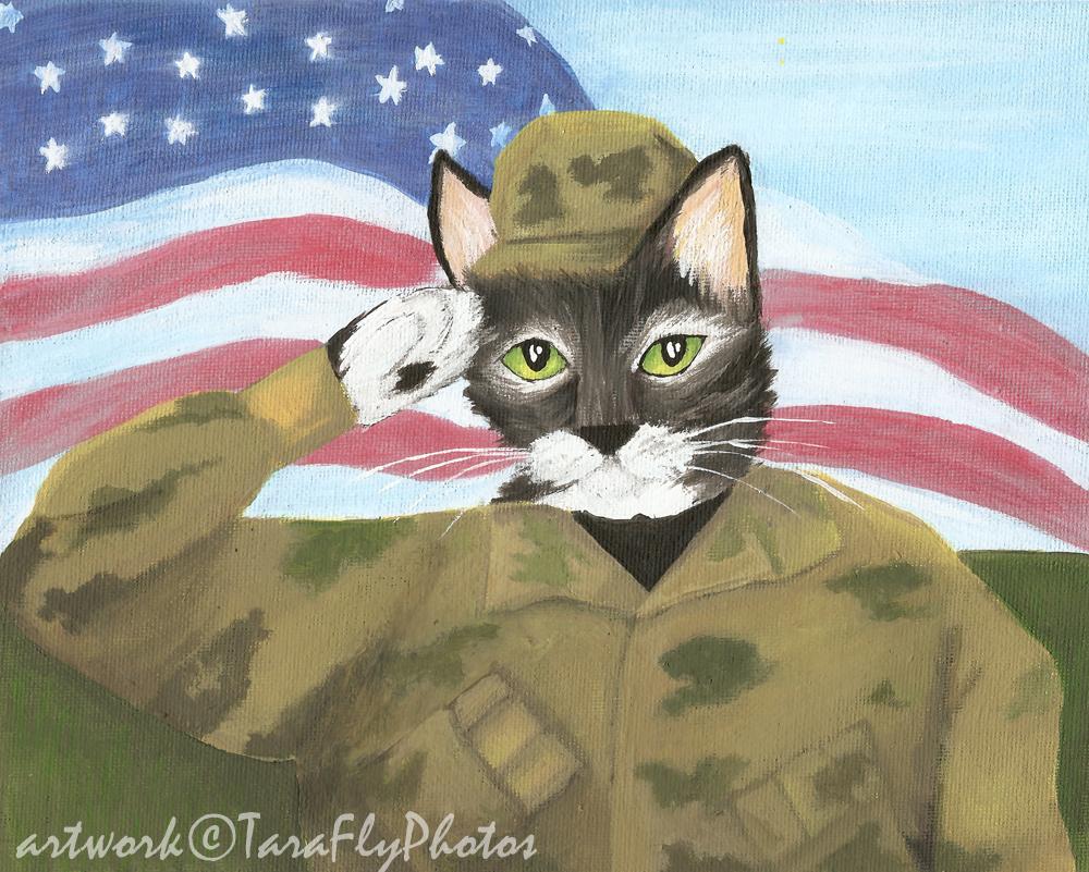 Картинки кошки солдаты
