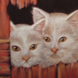 White kittens in a barn door