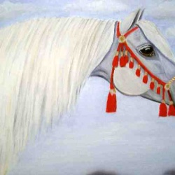 Arab stallion with red headress oil painting Commission SOLD