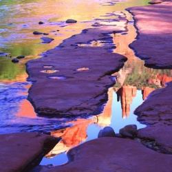'Oak Creek Mirror'