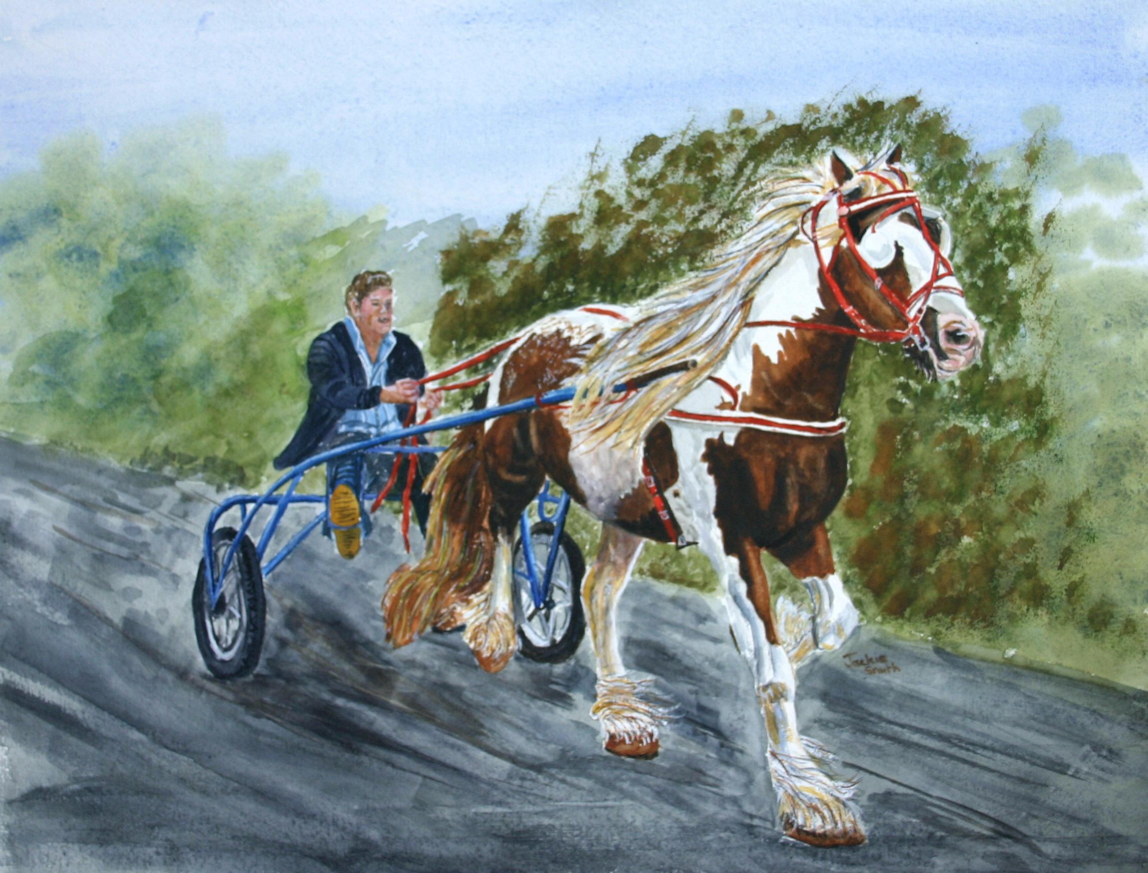 racing sulky