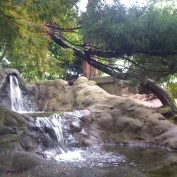 waterfall in the park #2