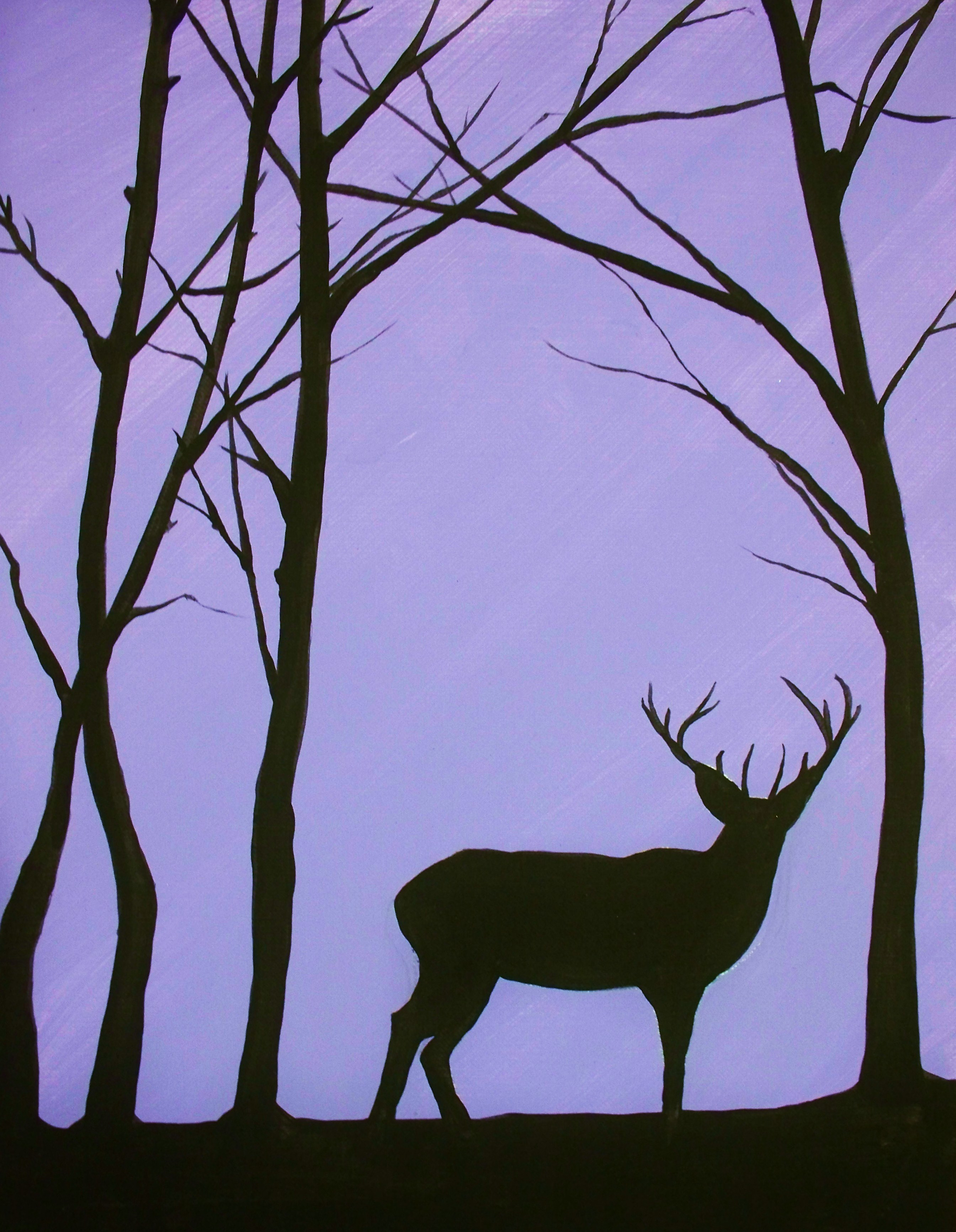 Forest Silhouette Wwwgalleryhipcom The Hippest Pics