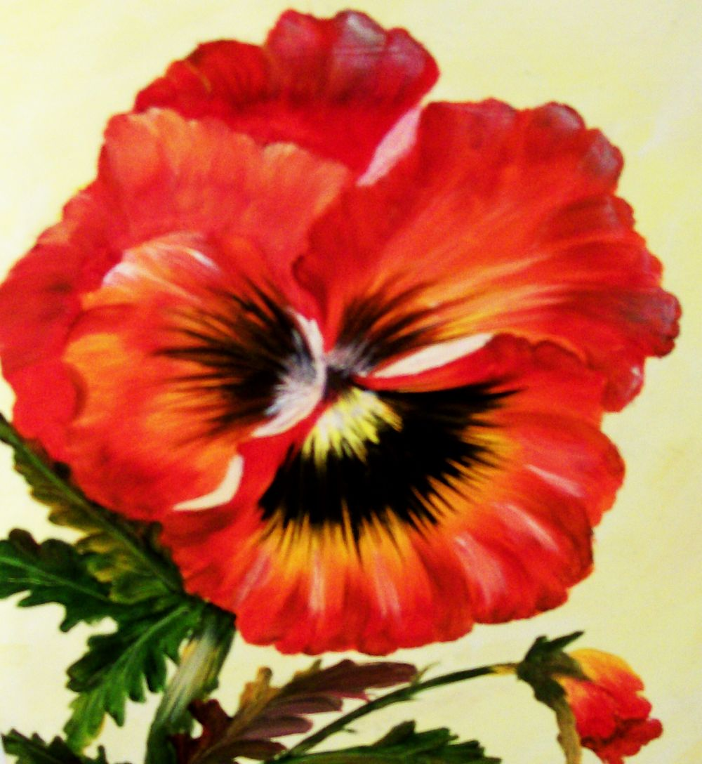 Fancy Red Pansy Oil Painting Barbsgalleryofart Foundmyself