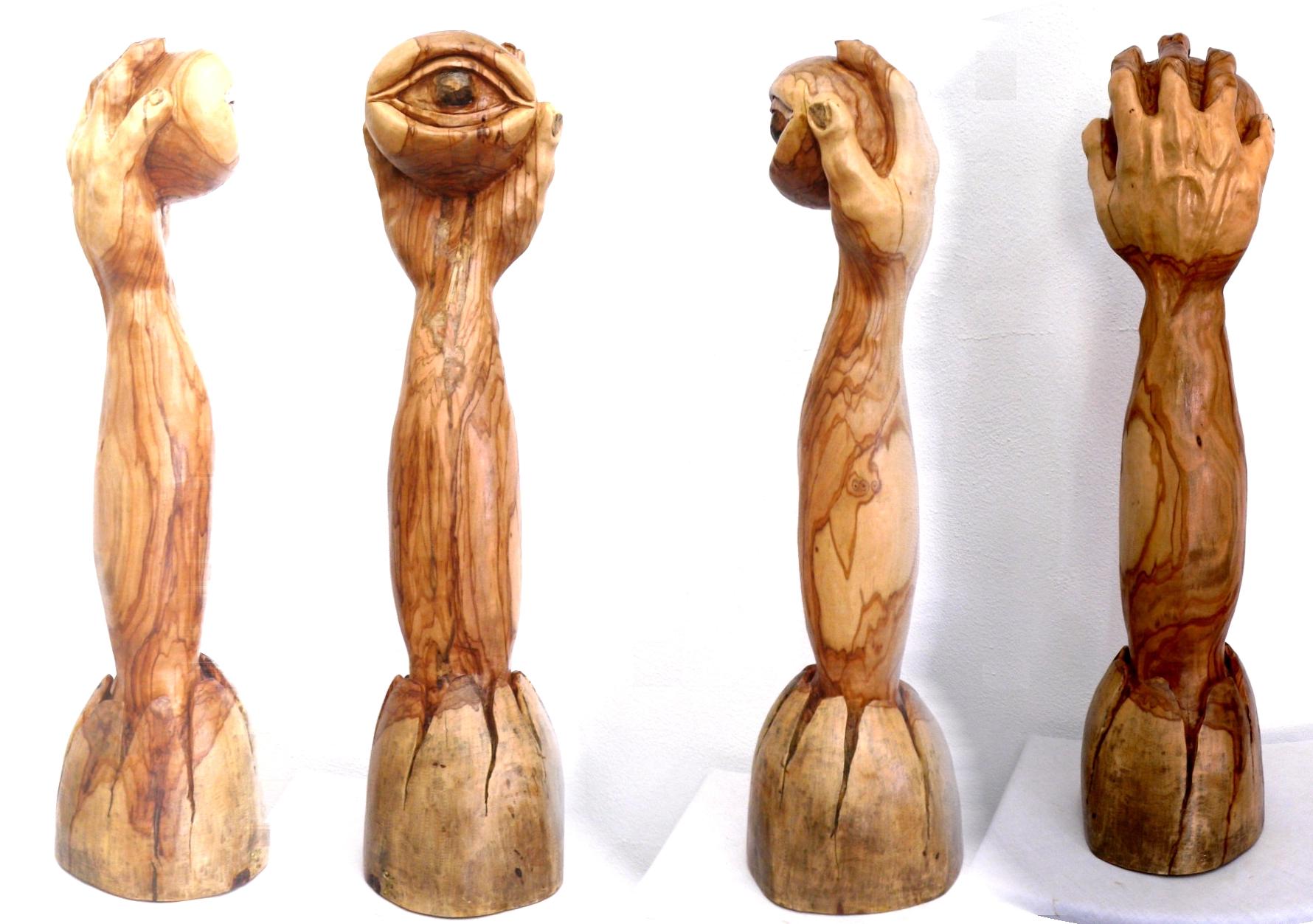 Emerging Eye, Olive wood sculpture | Eric Kempson ...