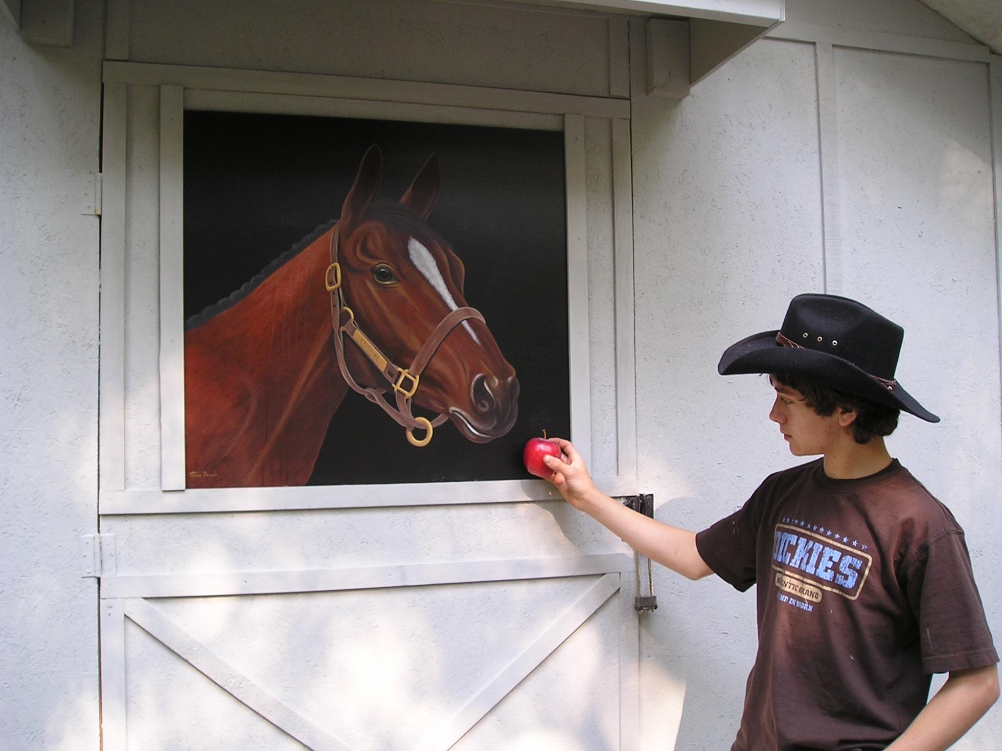 Horse On Barn Door & Horse On Barn Door | Steve Daniels | Foundmyself