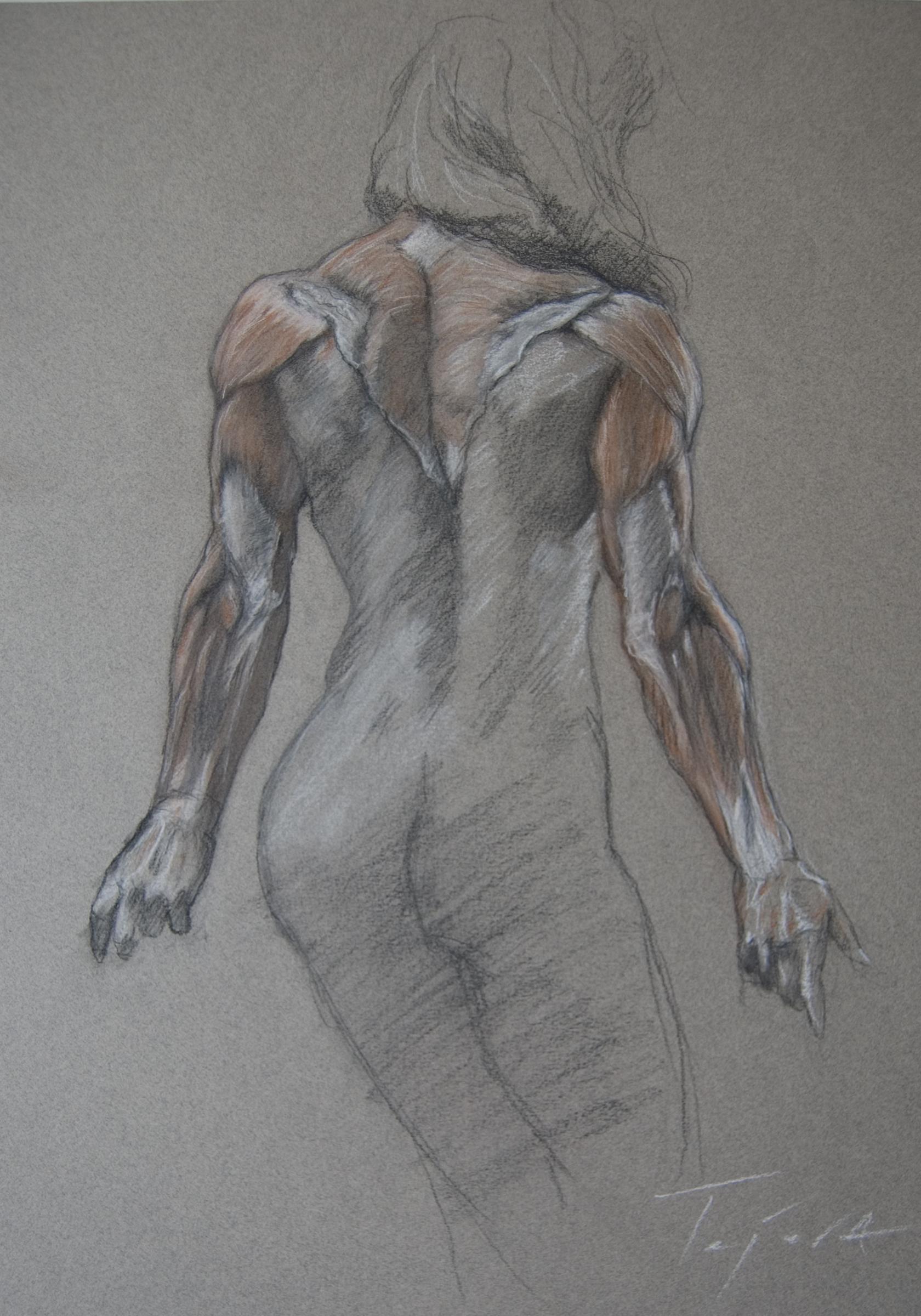 Arm Anatomy | JTejera_Art | Foundmyself