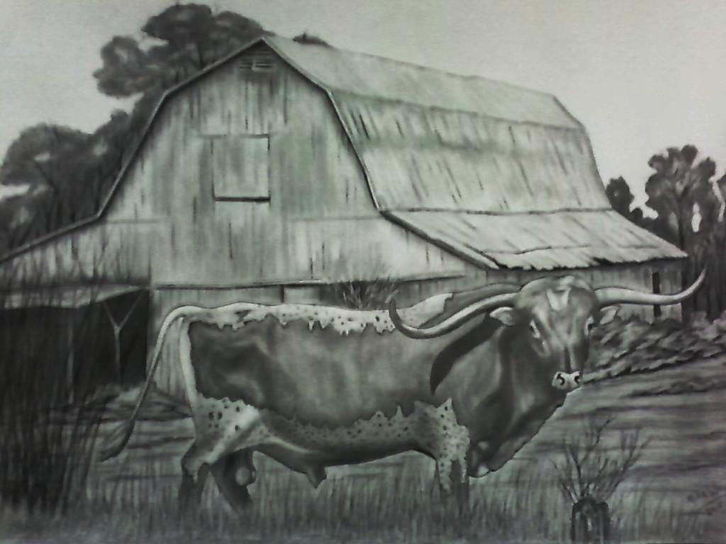 "Farm Barn Drawing longhorn on the farm.18""x 24""original hand drawing | on the wall"