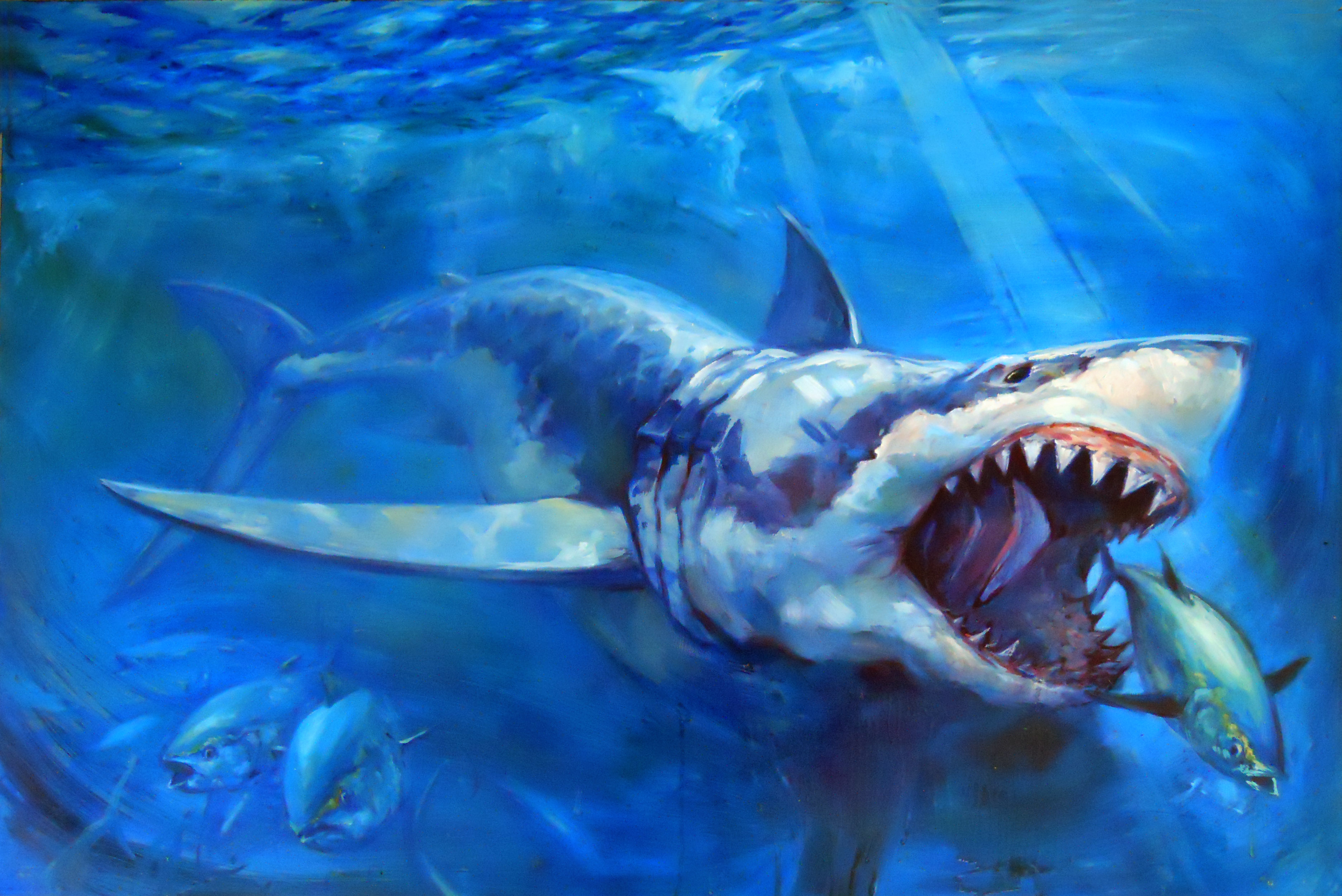 The Hunt | Tom Dauria | Foundmyself  Great White Shark Painting