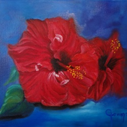 Two Red Hibiscus