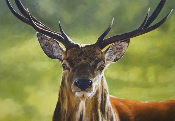 Dear Painting Deer Heads