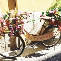 Bicycle-Flowers