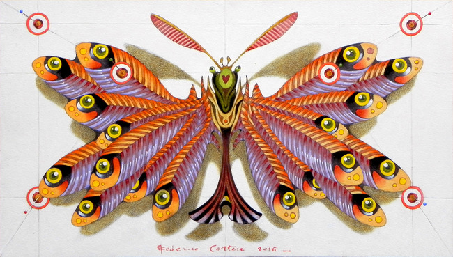 Anchovies butterfly