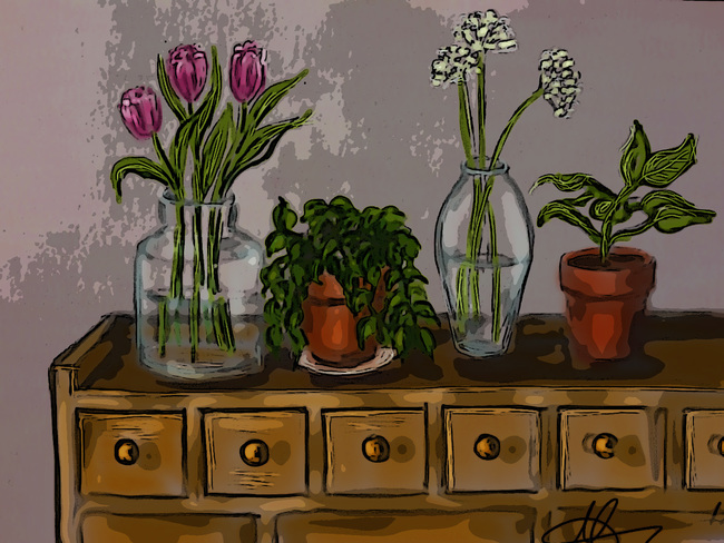 Flowers and plants-2