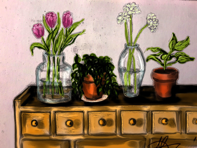 Flowers and plants-1