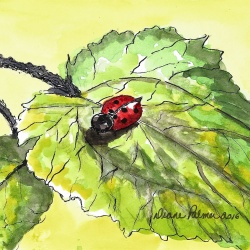 Hungry Lady Bug - Ink and Watercolor Painting