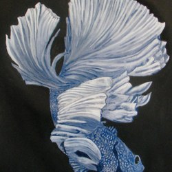 Fighting Fish Blue