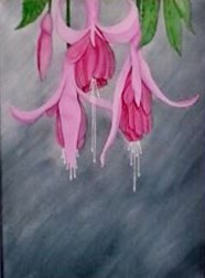 Fuchsia on Grey