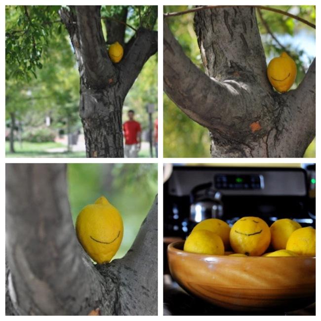 Lemon silliness