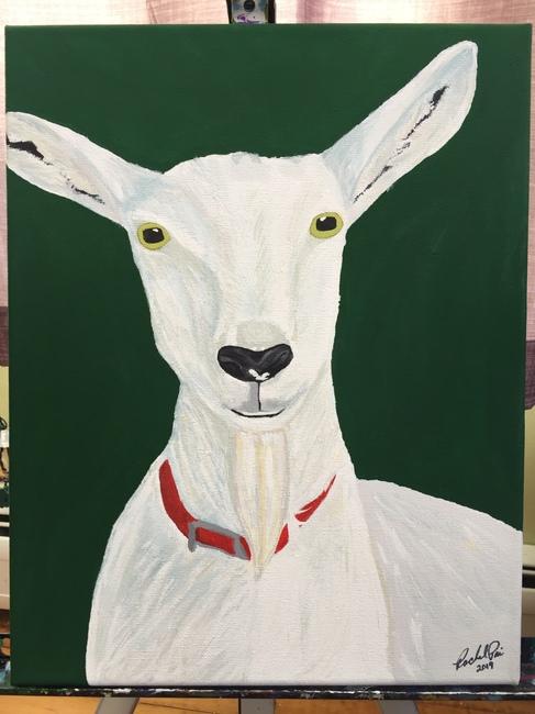 Seenan Goat