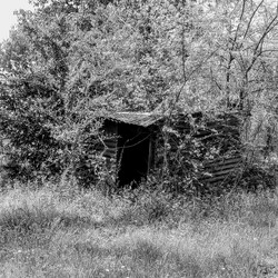 The old well shed