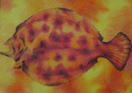 Aquarium Gallery--Water Colors